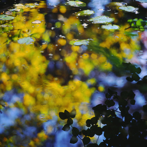 Autumn Mirror I.jpg